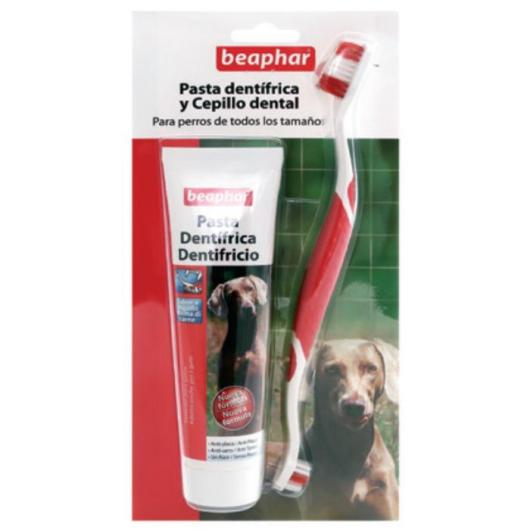 Pack dentifrice + brosse pour chiens