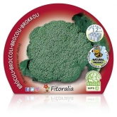 Broccoli Mudas Verde ECO-Pack 12 unidades.