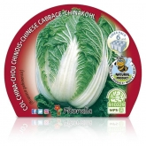 Plantón ecológico de  Col China Pack 6 ud. 54x43mm