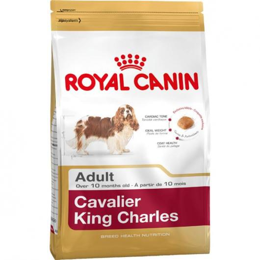 Royal Canin Cavalier King Charles Adulte