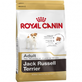 Royal Canin Jack Russel Adulto