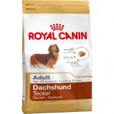 Royal Canin Bassotto Adulto