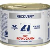 Royal Canin Recovery Canine/Feline (Chat/Chien) 195 g