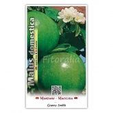 Manzano Granny Smith (Malus domestica)