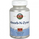 ABSORB-N-ZYME- 90 COMPRIMIDOS