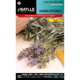 Semillas de  Lavanda Officinalis