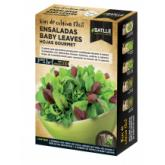Kit insalata baby leaves Foglie Gourmet